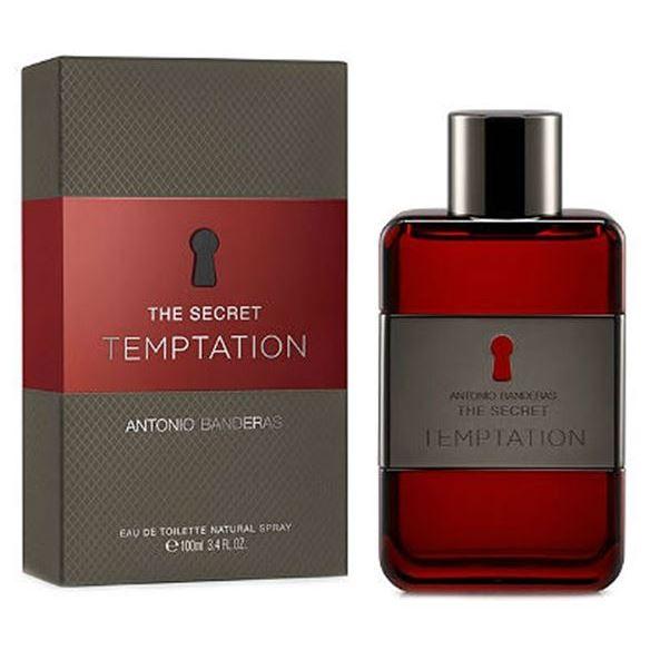 Туалетная вода Antonio Banderas The Secret Temptation 50 мл antonio banderas antonio banderas the secret temptation туалетная вода спрей 100 мл