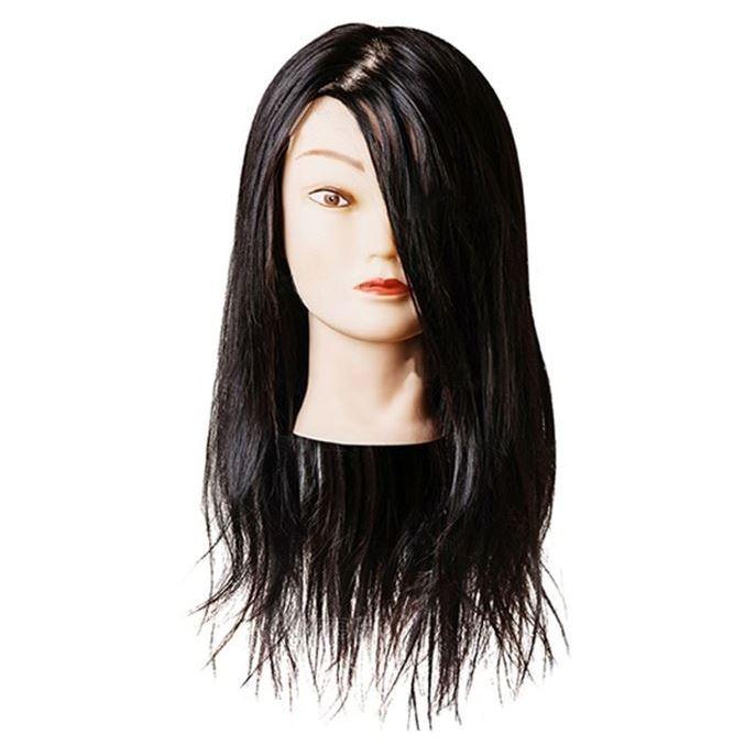 Сопутствующие товары Harizma Professional h10821 Голова учебная брюнет (1 шт) манекен с натуральными волосами