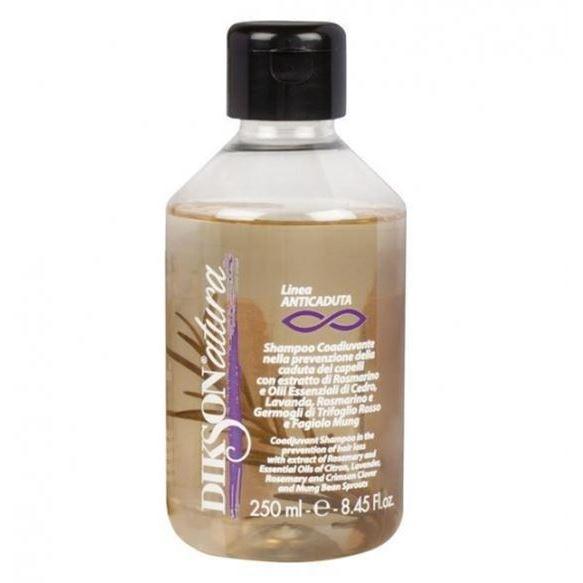Шампунь Dikson Anti-Hairloss Shampoo 250 мл недорого